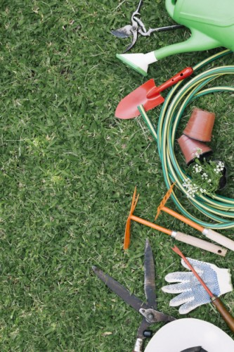 Agriculture products, Tools and Garden supplies
